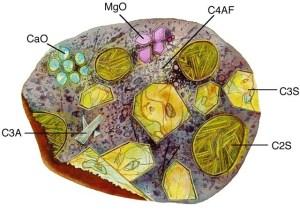 Gambaran Senyawa Kimia pada Semen