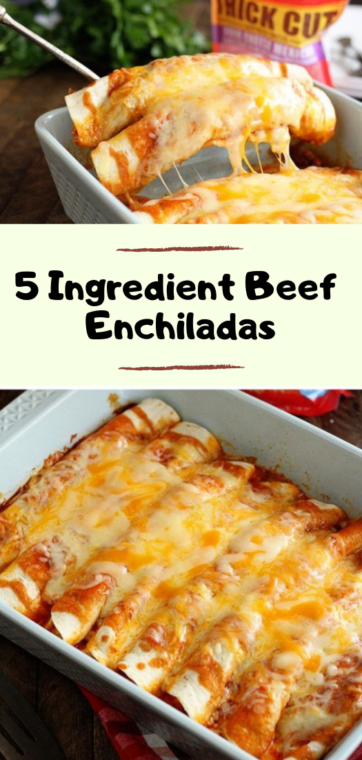 5 Ingredient Beef Enchiladas #dinnerrecipe #food #amazingrecipe