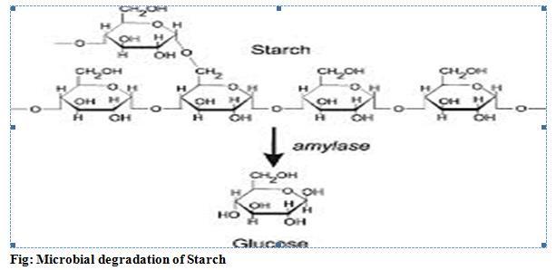 Microbial Degradation of Cellulose, starch, lipids, legnin,pectin