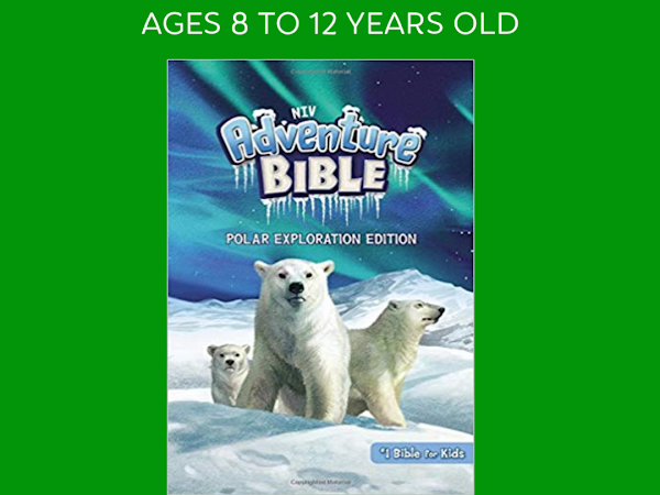 Perfect Bible for Kids