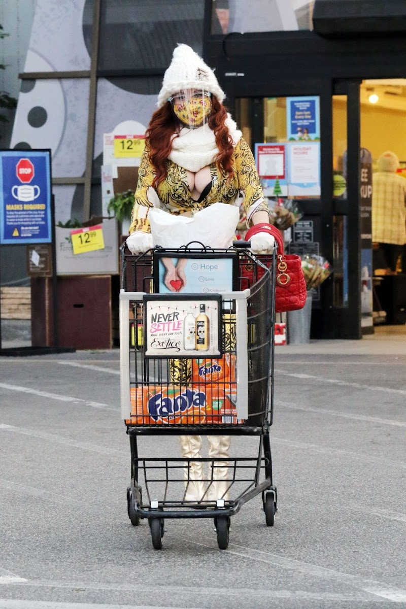 Phoebe Price Shopping at Ralph's in Los Angeles 1 Jan- 2021
