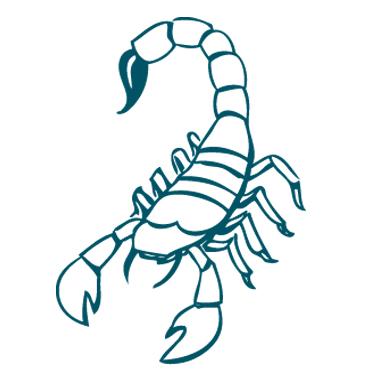 Scorpio Health & Wellness Horoscope