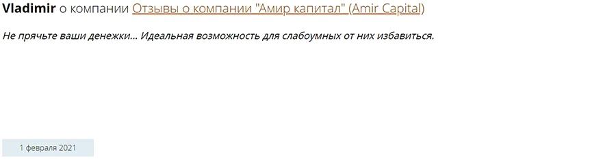 Amir Capital отзывы 2021