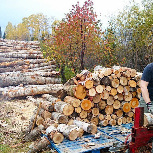 stacking and splitting firewood