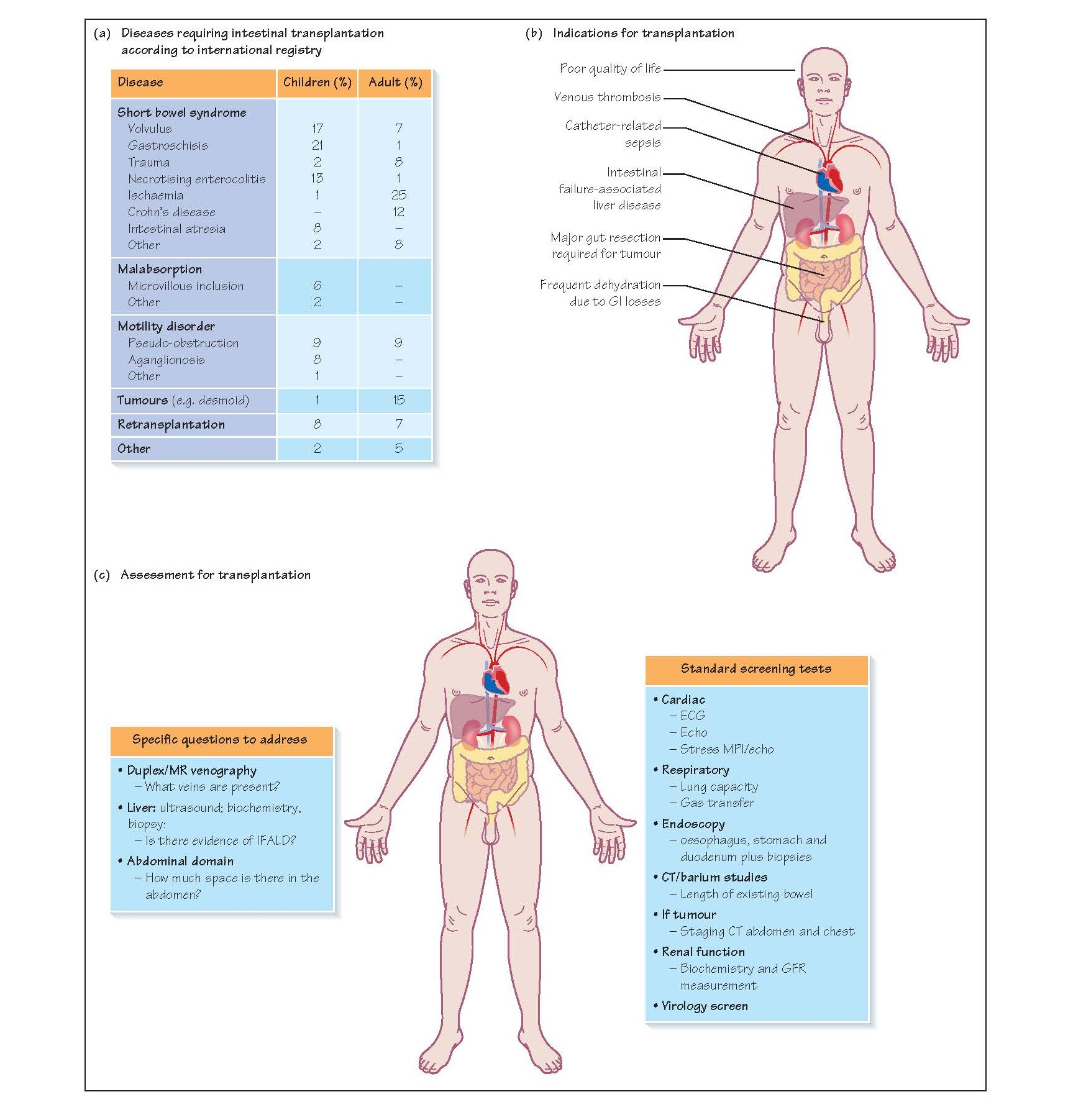 Intestinal Failure And Assessment, Venous thrombosis,