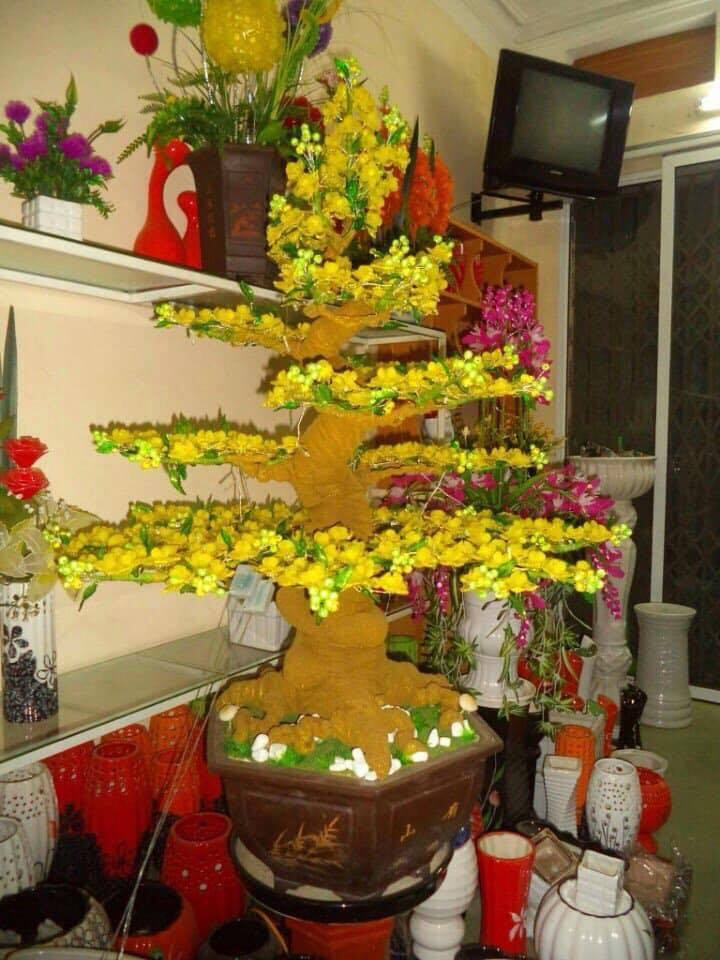 Goc bonsai mai dao o Dinh Cong Trang