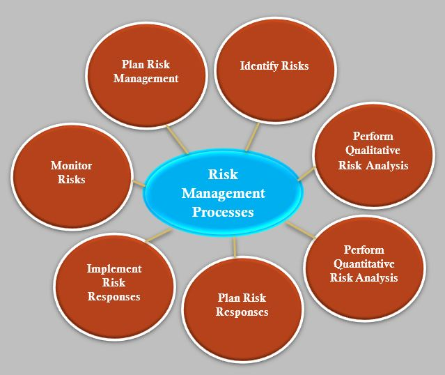 What is Risk Management? Processes of Risk Management