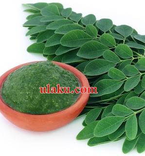 manfaat daun kelor untuk diabetes, khasiat daun kelor untuk kesehatan