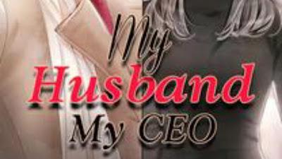 Novel my husband my ceo