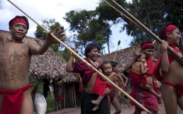 Yanomami5.jpg