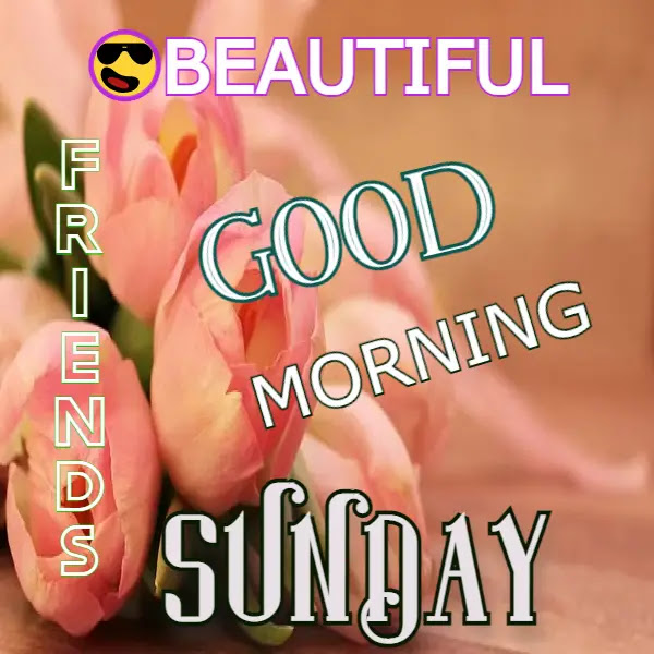 Happy Good Morning Sunday Images HD ! Free Download