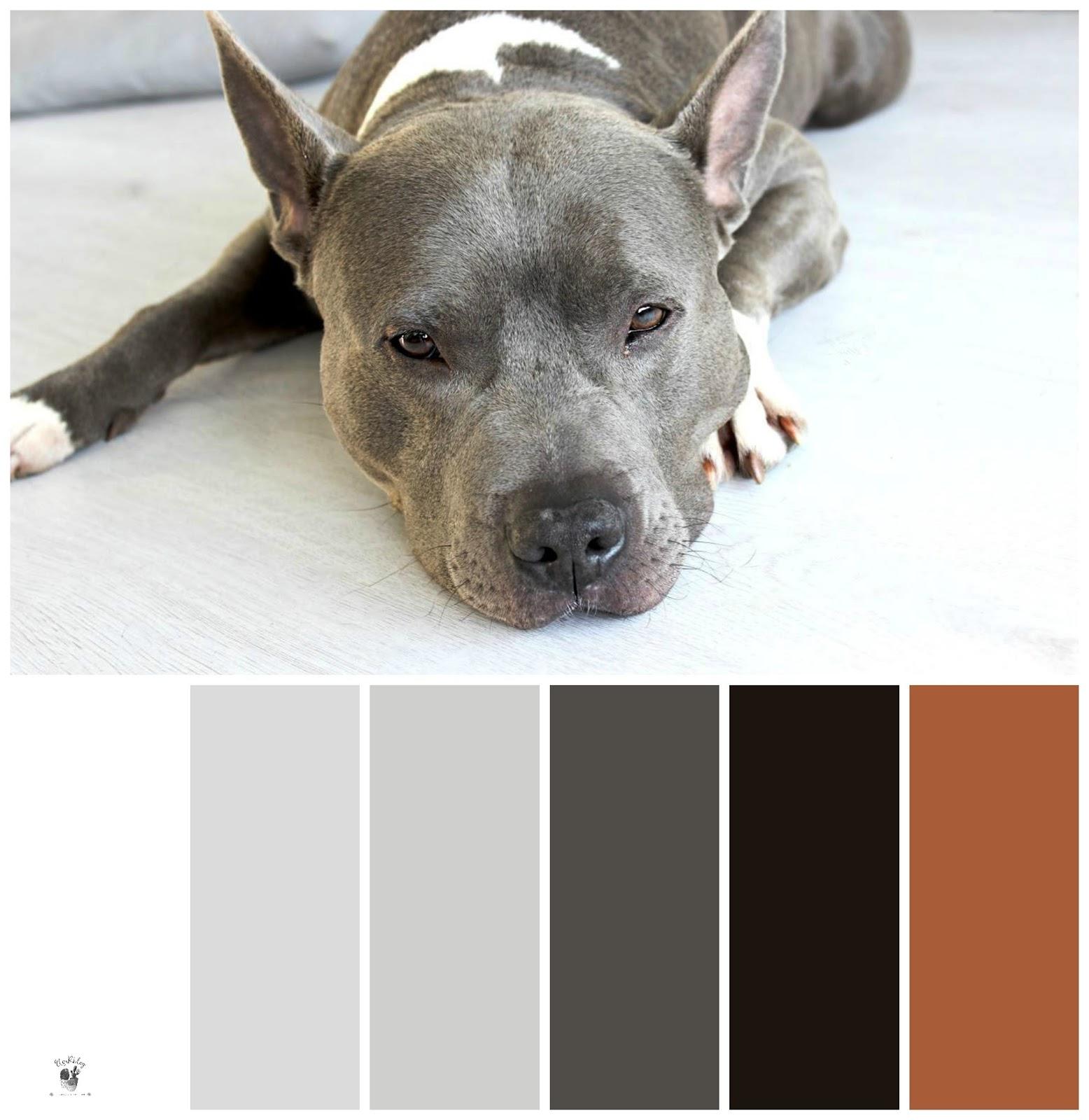 kleurenpalet voor een industrieel interieur