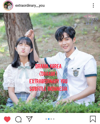 Drama Korea (Drakor) Extraordinary You Subtitle Indonesia