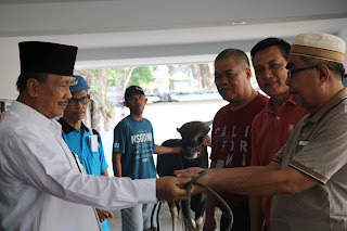 Pengadilan Tinggi Agama Palembang potong 3 Ekor Sapi di Hari Raya Idul Adha 1440 H