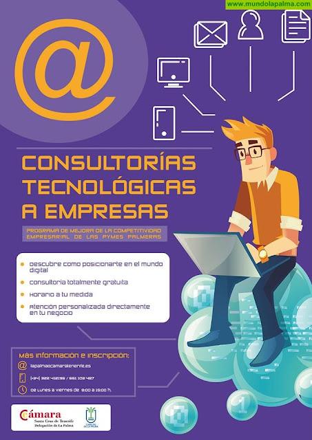 Programas de consultoría para la mejora de la competitividad empresarial de las PYMES palmeras