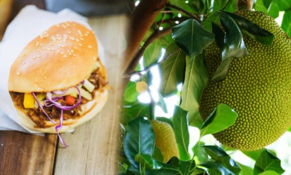 Veganer Fleischersatz Jackfruit