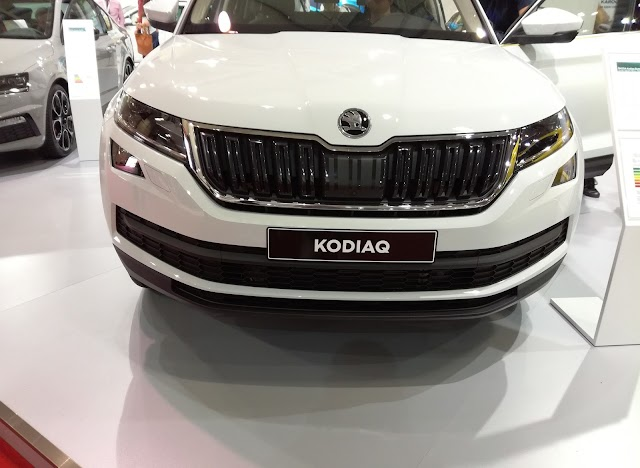 Skoda Kodiaq and Karoq - great family and business SUVs