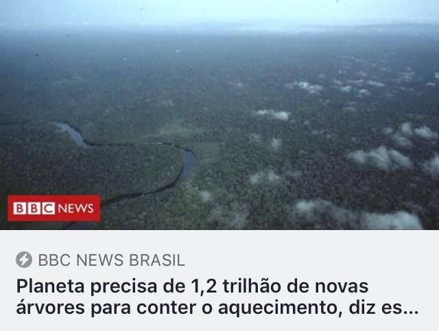 https://www.bbc.com/portuguese/internacional-48859538?fbclid=IwAR00CO47Jot-5Ufcp0Ea-Io2n6jwfk1XlXUk1_DPnNQ7dGE59o6aKf9IeFc