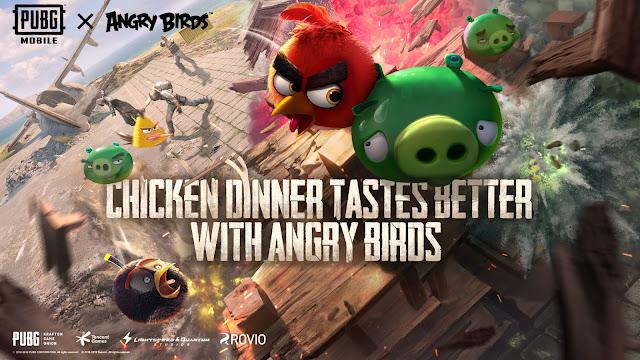 kızgın kuşlar resmi