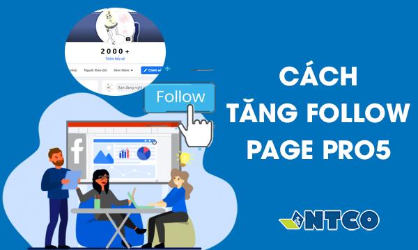 tang theo doi fanpage