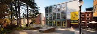 Felician University International Undergraduate Financial Aid - USA