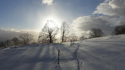 Mountainbike-Spur im Schnee