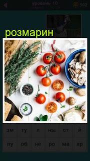 на столе находятся разные овощи в том числе розмарин сбоку лежит