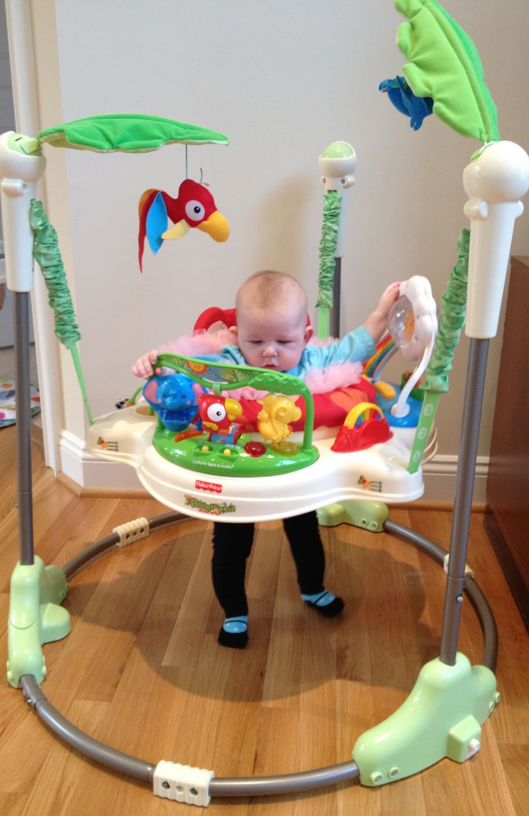 062942d89ec1 2 Jumpers  Fisher-Price Rainforest Jumperoo and the Graco Jump N ...