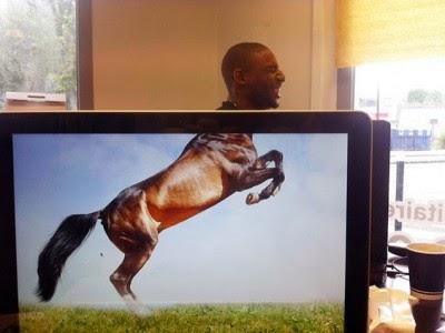desk safari  imagenes increibles