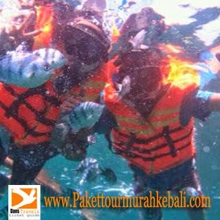 Snorkeling in Sanur