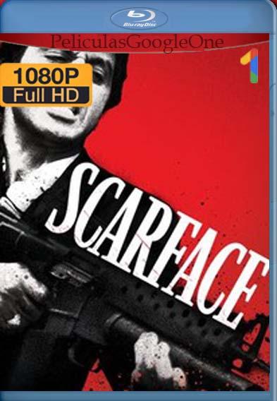 Scarface (1983) [1080p BRrip] [Latino-Inglés] [LaPipiotaHD]