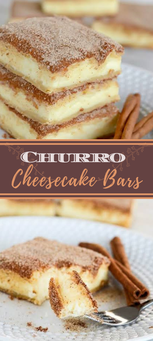 Churro Cheesecake Bars #desserts #cakerecipe #chocolate #fingerfood #easy
