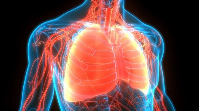 Astegolimab Effectively Reduces Asthma Exacerbation, Study Finds