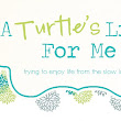 A Turtle's Life for Me: Freezer Meals on the Cheap