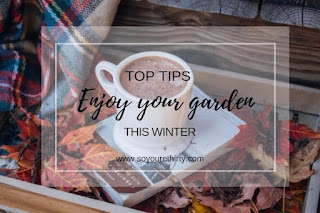 Top tips to enjoy your garden this winter