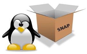 Pinguim Tux mascote do Linux com uma caixa ao lado