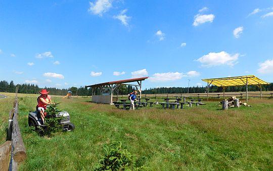 Pole biwakowe w Lasówce.