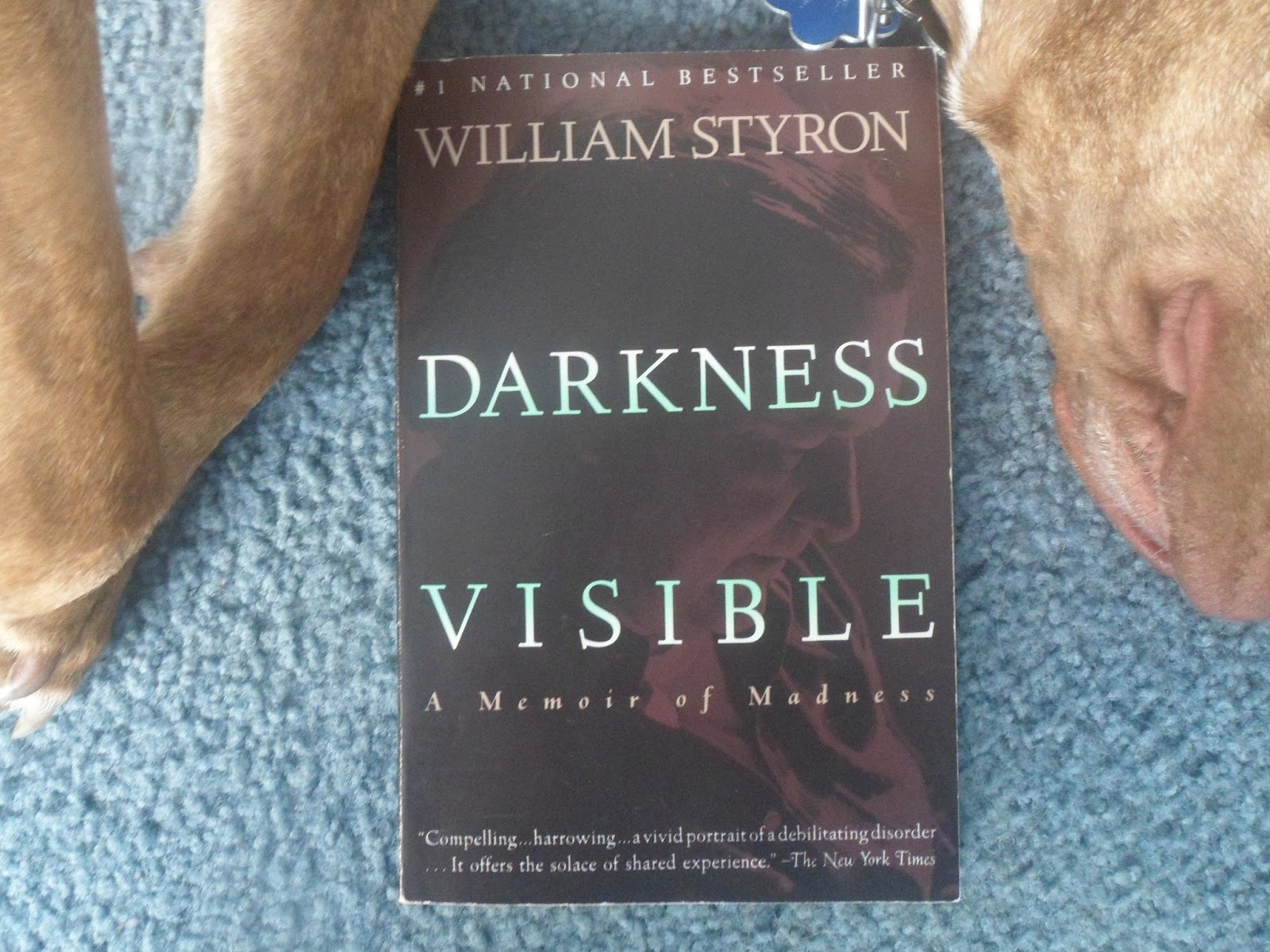 books darkness visible the house on mango street i am fairly young and there remains a vast array of literature that i ve yet to become acquainted yet and still thanks to the experiences i have had