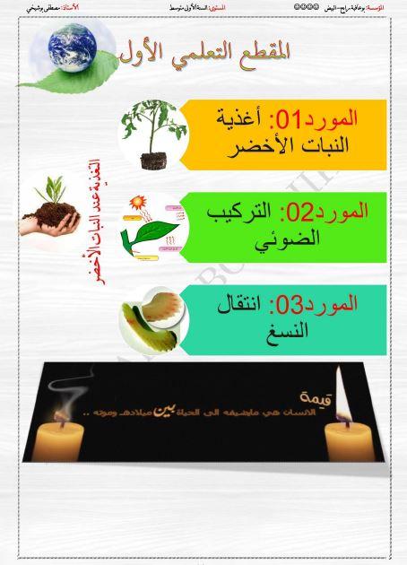 مذكرات المقطع الثاني التغذية عند النبات الاخضر للاستاذ مصطفى بوشيخي