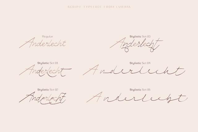 Zhafir script font invitation modern script feminime stylish
