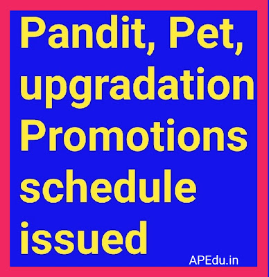 Pandit, Pet, upgradation- Promotions schedule issued