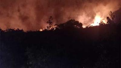 Lahan di Bukit Taratak Terbakar, Jangan Asal Buang Puntung dan Bakar Sampah