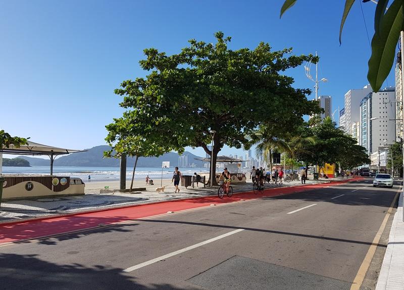 BC BY BUS, Tudo sobre o ônibus Turístico de Balneário Camboriú