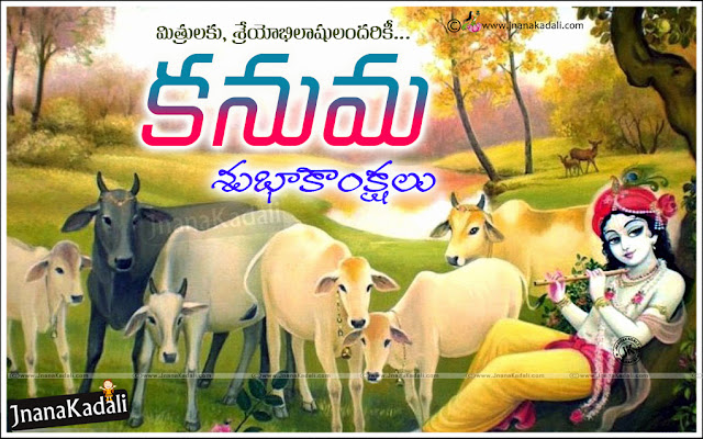 telugu kanuma wishes-kanuma wallpapes with greetings in Telugu-Telugu kanuma