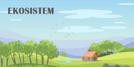 Ruang Lingkup dan Komponen Penyusun Ekosistem