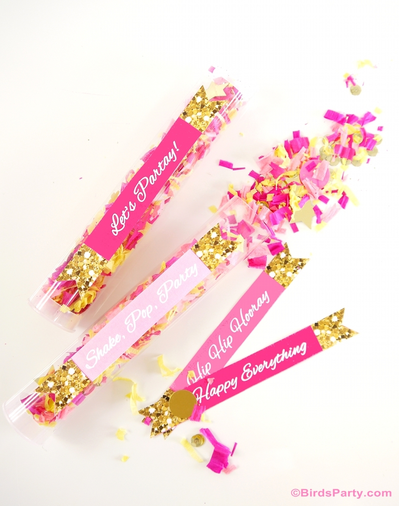 How to Make DIY Confetti Poppers for Your Party - BirdsPary.com
