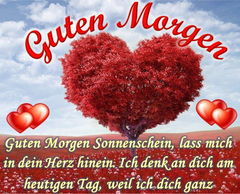 Ich Liebe Dich Mein Liebling Guten Morgen Liebling Fa R Mein