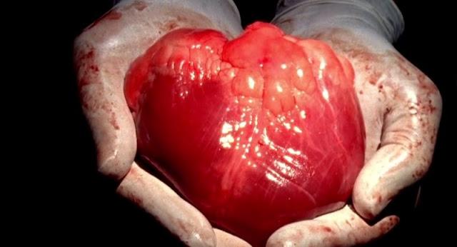 Artificial heart with an innovative mechanism