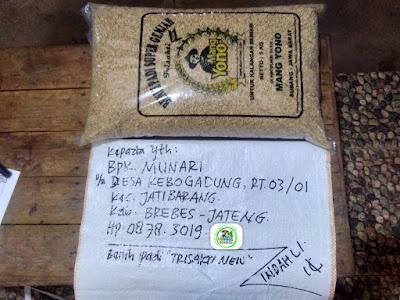 Benih padi yang dibeli   MUNARI Brebes, Jateng.  (Sebelum packing karung).