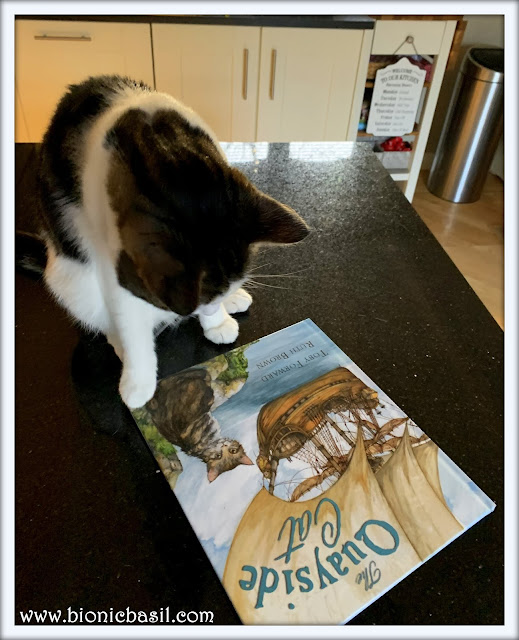 Book Reviews with Amber #153 ©BionicBasil® The Quayside Cat & Melvyn 2021